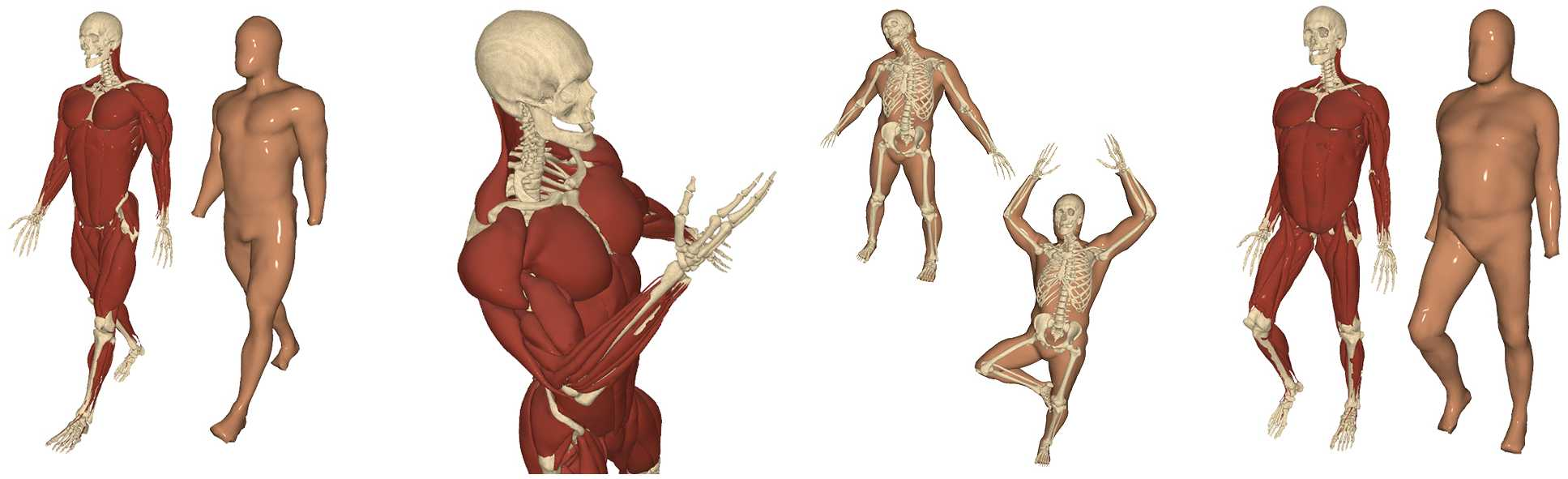 Reconstructing Personalized Anatomical Models for Physics-based Body ...